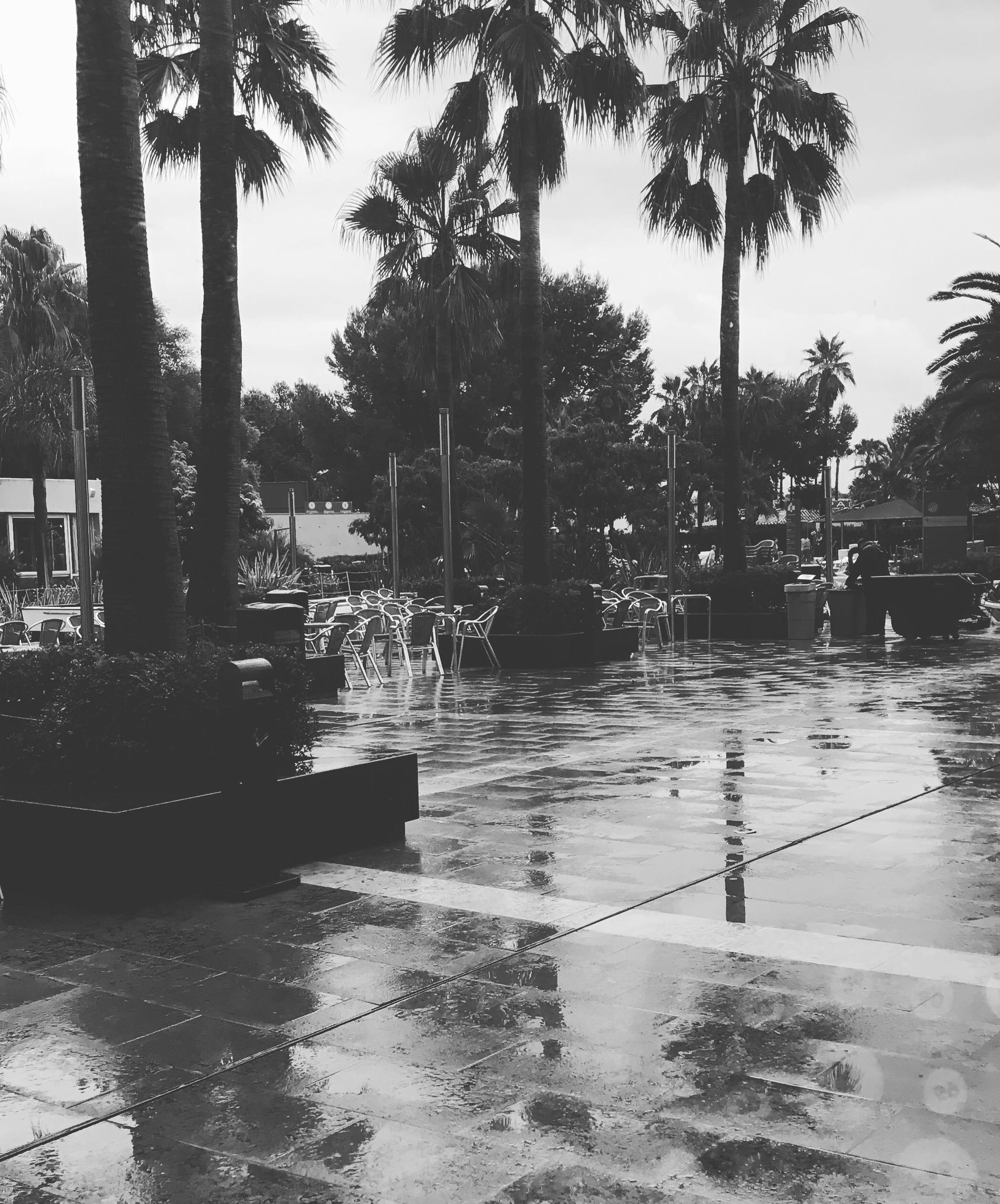 Spain In The Rain