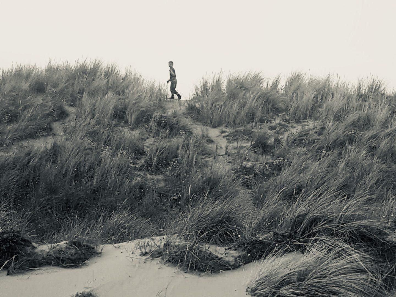 #LivingArrows - Sea, Sand & Basset Hounds 26/53 (2018)