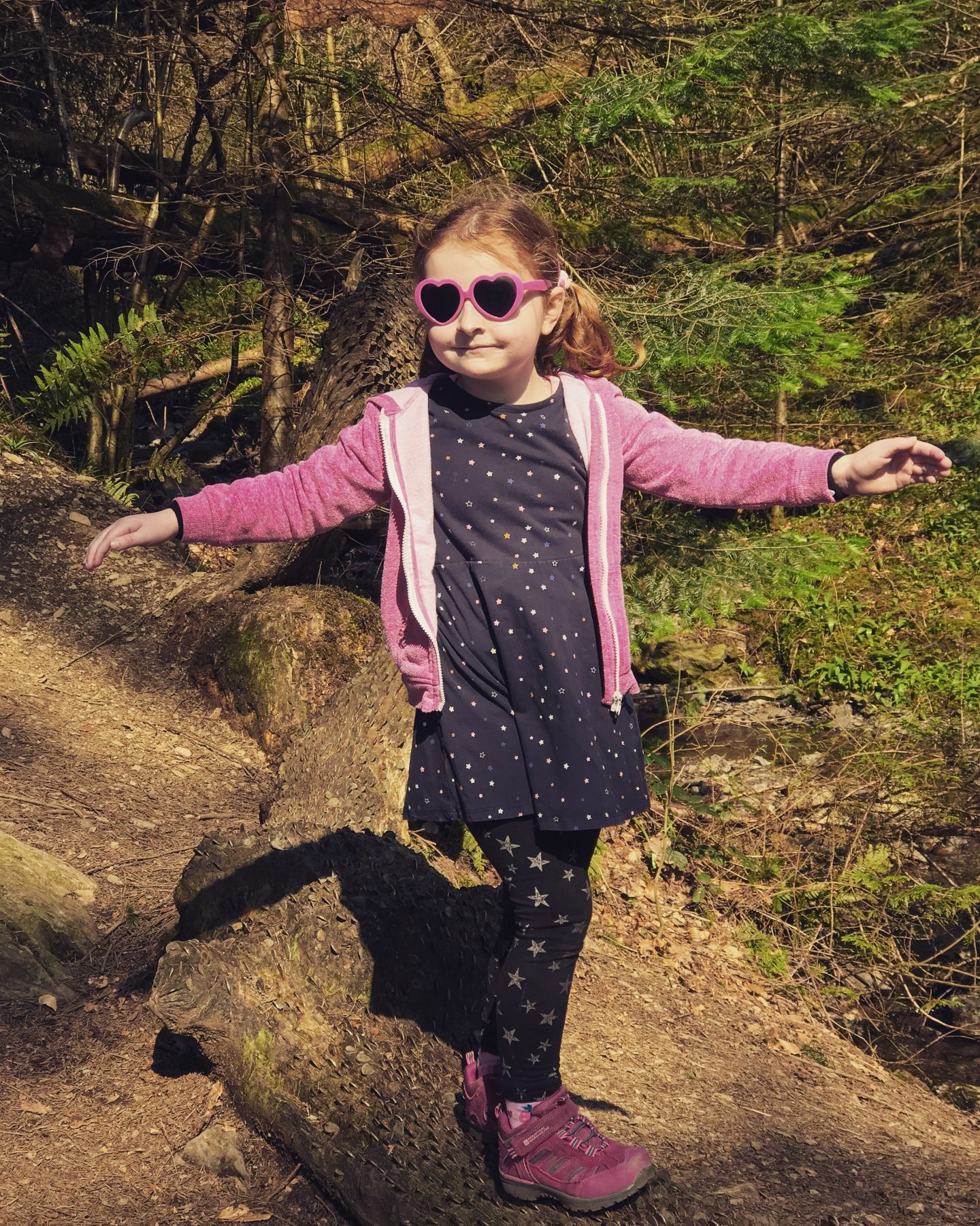 #LivingArrows - The Grizedale Forest Zog Activity Trail 14/52 (2019)