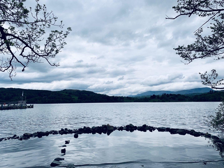 #MySundaySnapshot – Swan Lake 20/52 (2019)