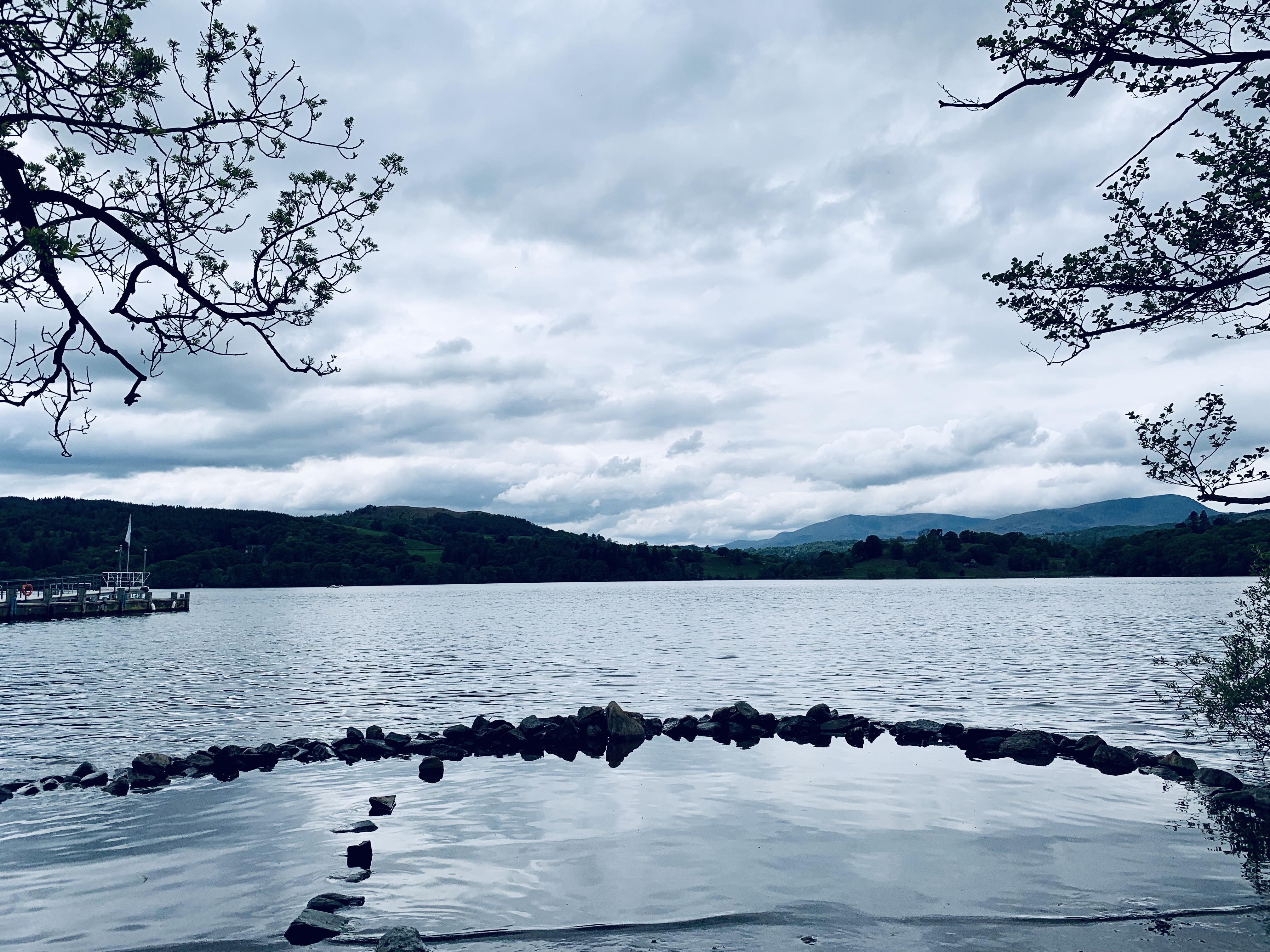 #MySundaySnapshot - Swan Lake 20/52 (2019)
