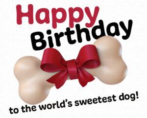 Happy 3rd Birthday Maisy