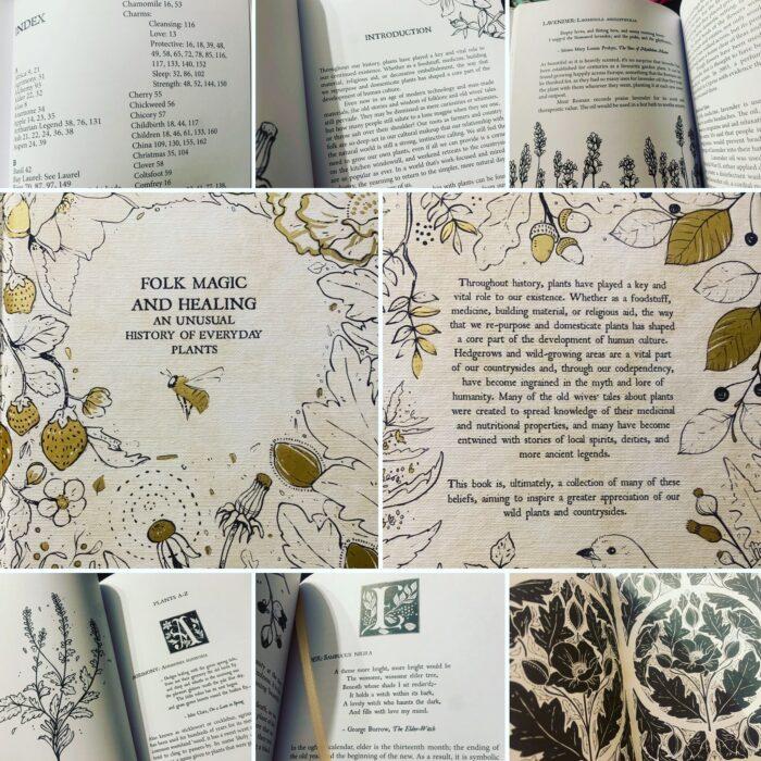 Folk Magic & Healing - An Unusual History of Everyday Plants